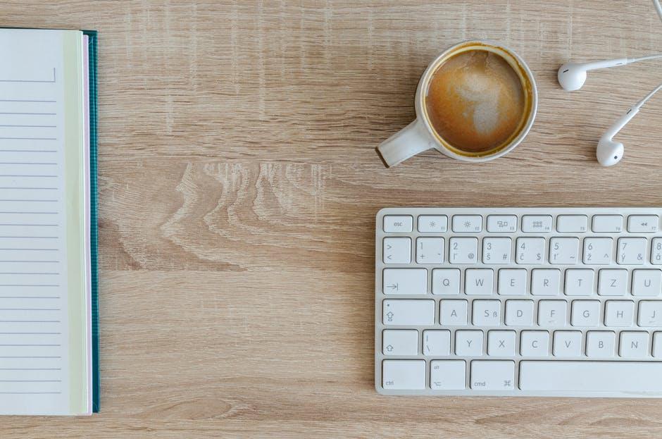 Tudo o que você precisa saber em relação à descupinização da sua empresa