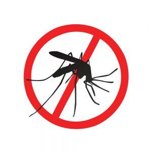 dedetização de mosquito