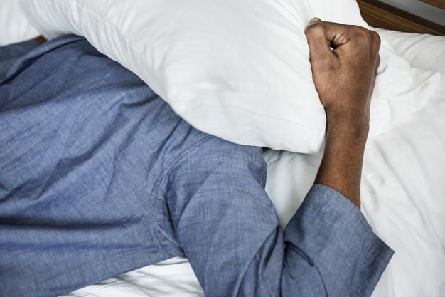 10 curiosidades sobre os percevejos de cama