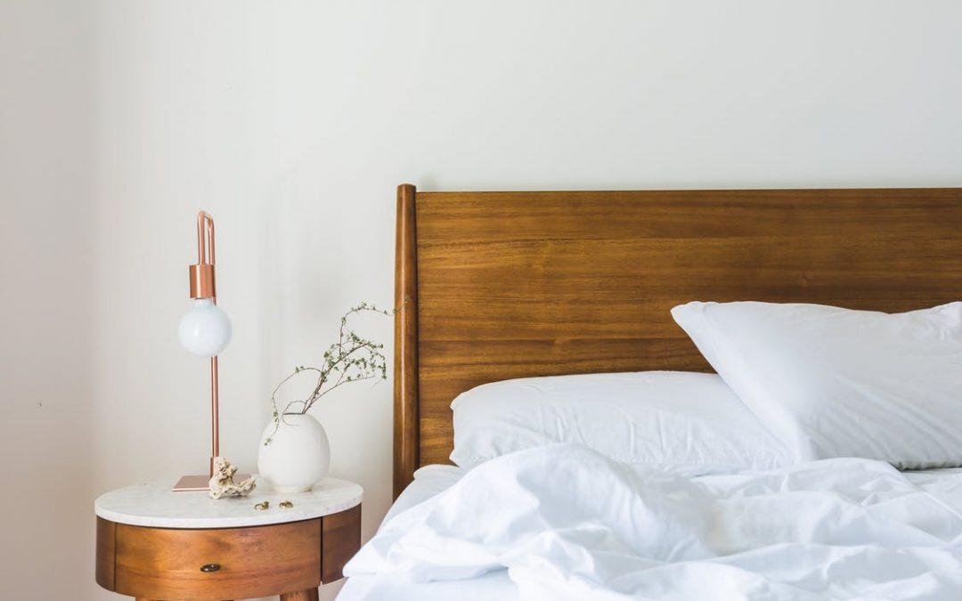 Não tente se livrar dos percevejos de cama sozinho: saiba o motivo!