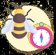 A abelha tem um grande senso de direção.