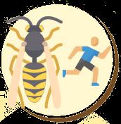As vespas e marimbondos picam mais de uma vez.