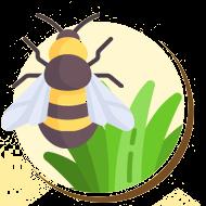 As abelhas e vespas são responsáveis pela polinização de diversos tipos de plantas.