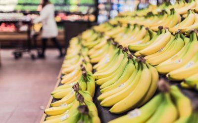 Conheça o Manejo Integrado de Pragas para o controle de pragas em supermercados
