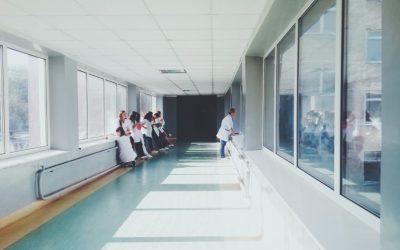 Controle de pragas em hospitais: principais insetos e animais perigosos