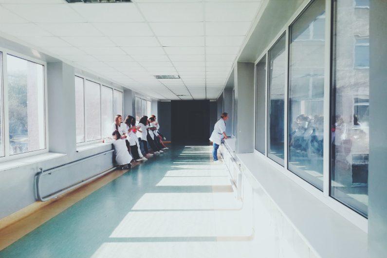 Controle de pragas em hospitais principais insetos e animais perigosos - Uniprag
