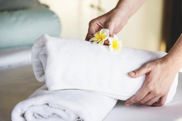 Controle de pragas em hotéis: como funciona?