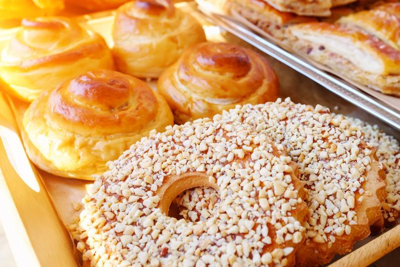 Controle de Pragas para Indústria de Alimentos: conheça o Manejo Integrado de Pragas
