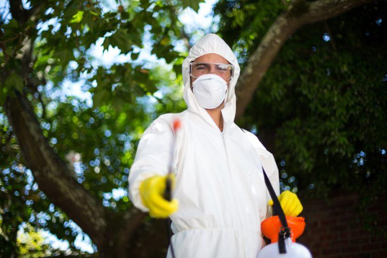 Dedetizadora no Rio de Janeiro Contrate serviços de controle de pragas de alta qualidade - Uniprag