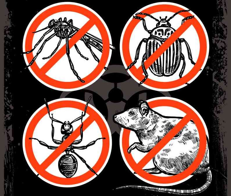 Não esqueça das ameaças visíveis: mantenha o controle de pragas ativo