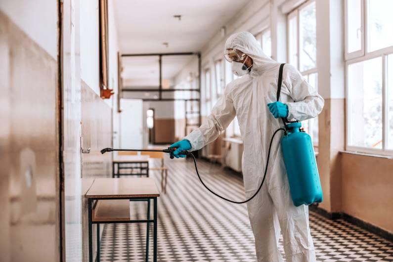 Dedetizadora em BH: conheça os trabalhos de higienização e sanitização