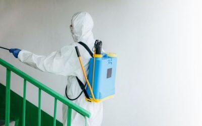 Dedetizadora no RJ: conheça os serviços de higienização e sanitização