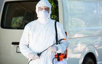 Dedetizadora no RJ: serviços disponíveis de controle de praga para sua proteção