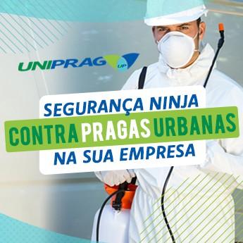 Segurança Ninja contra Pragas Urbanas na sua Empresa